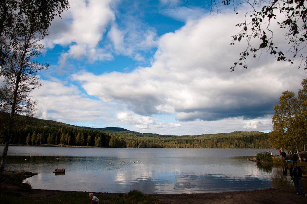 Bilderesultat for lake sognsvann
